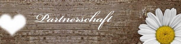 Partnervermittlungsagenturen österreich